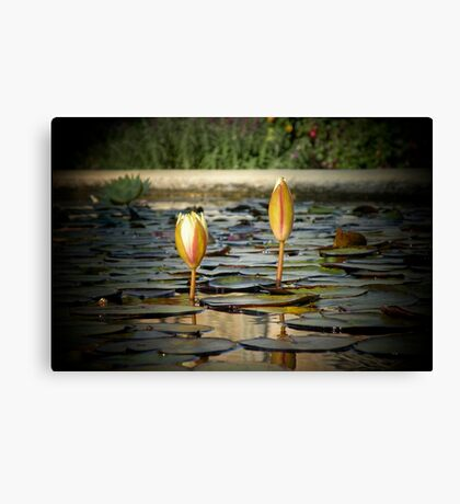 It's all about me and you... Canvas Print