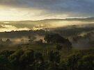 """""""Rural Canvas"""" by debsphotos"""