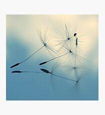 cloud nine Photographic Print