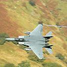 F-15 EAGLE by Stephen Kane