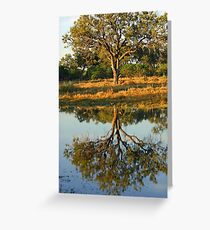 Silhouetted tree on the savuti channel Greeting Card