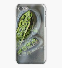 Green Frog in Water iPhone Case/Skin