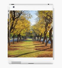 Wentworth Streetscape iPad Case/Skin