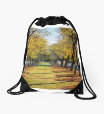 Wentworth Streetscape Drawstring Bag