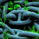 They've Chained Nature, but They Will Never Make It Sing by Peter Kurdulija