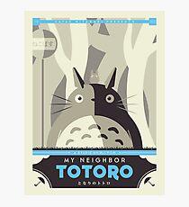Lámina fotográfica Mi vecino Totoro