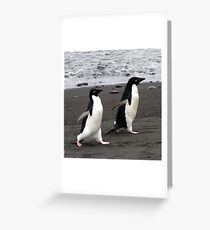 March of the Penguins Greeting Card