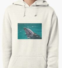 Dolphin Pullover Hoodie