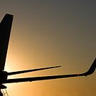Silhouette of a Jet Airliner in the Setting Sun by Buckwhite