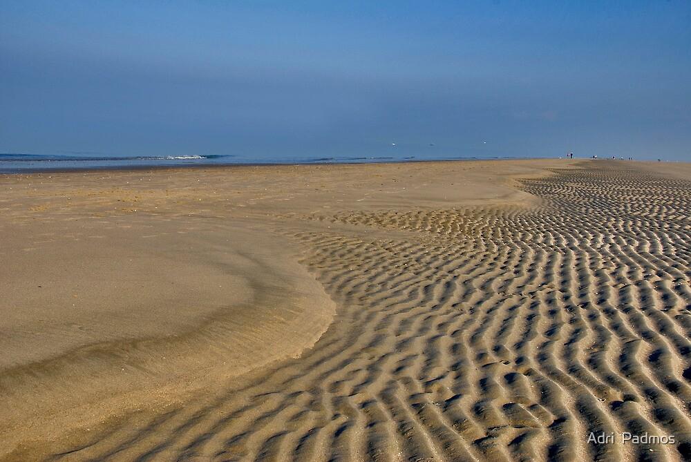 Wonderful autumn day on the beach by Adri  Padmos