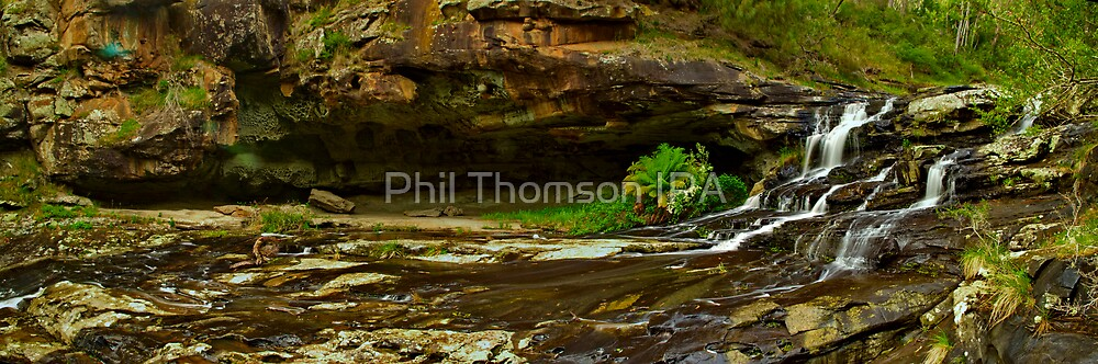"""""""Swallow Cave"""" by Phil Thomson IPA"""