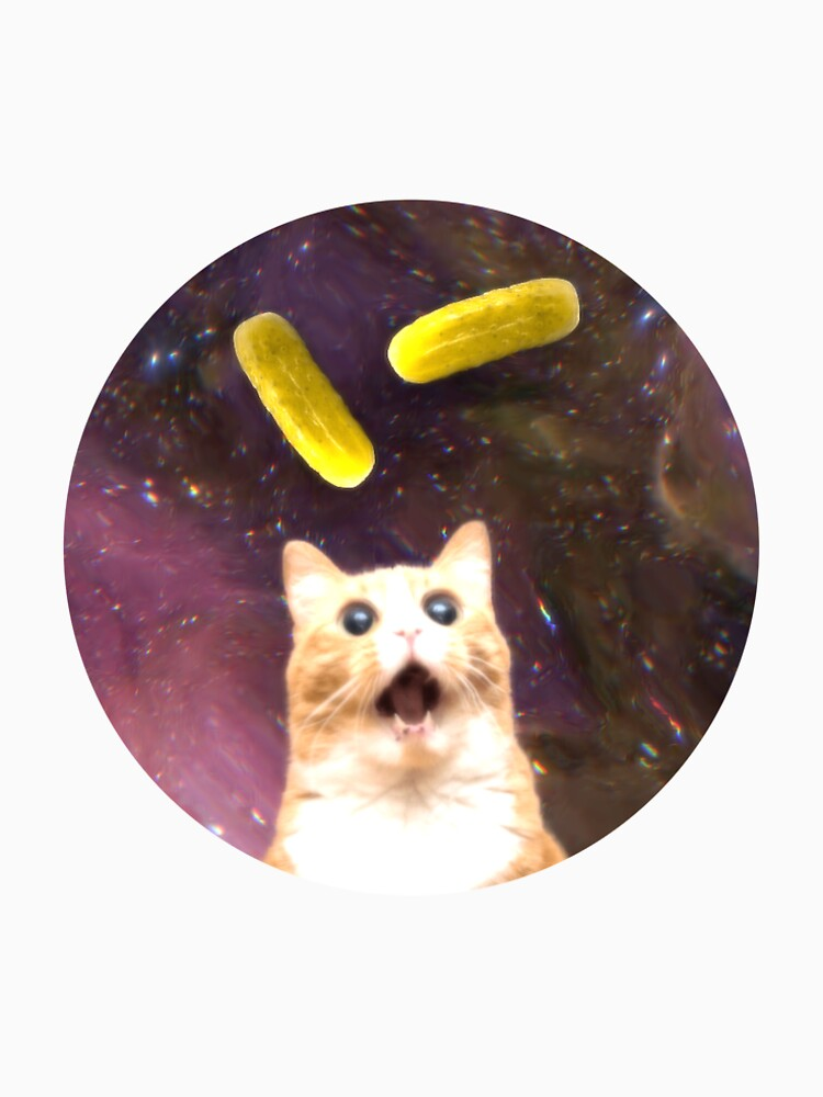 Pickle Cat by dhot
