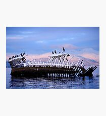 Shipwreck at the arctic coast Photographic Print