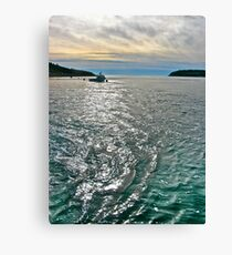 Should I be Doing This? Canvas Print