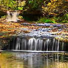 Yellow Springs, Ohio by Jerry Schlagheck