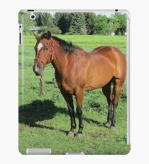 Beautiful Horse iPad Case/Skin
