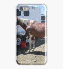 paint horse iPhone Case/Skin