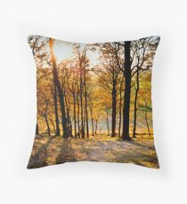 Sharpenhoe Clappers Throw Pillow