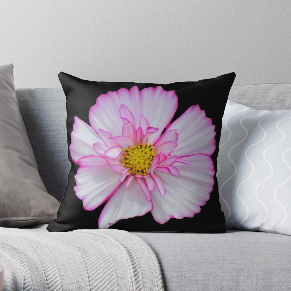 Blume in pink & weiß, Blumen, Blüte, Garten, Natur Dekokissen