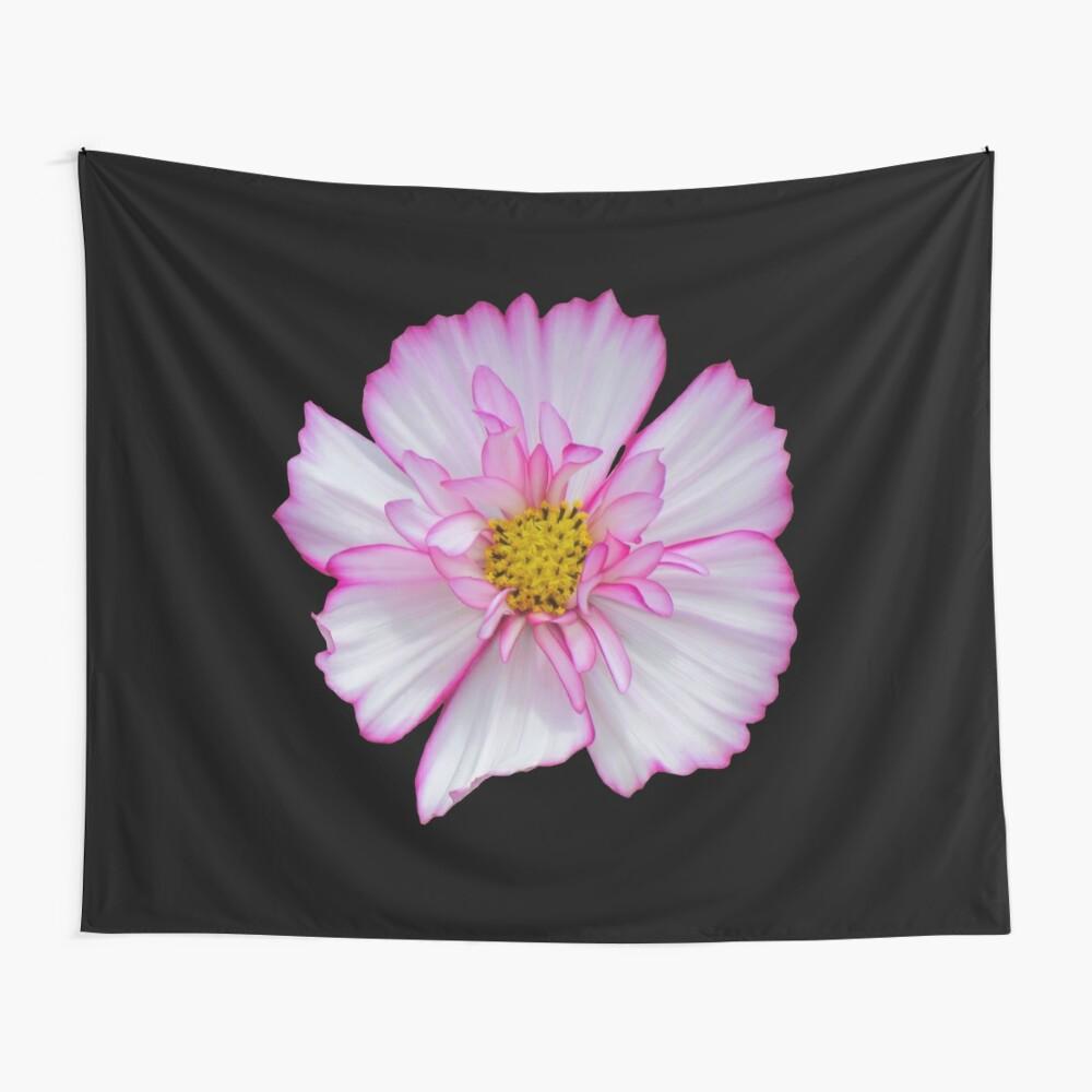 Blume in pink & weiß, Blumen, Blüte, Garten, Natur Wandbehang