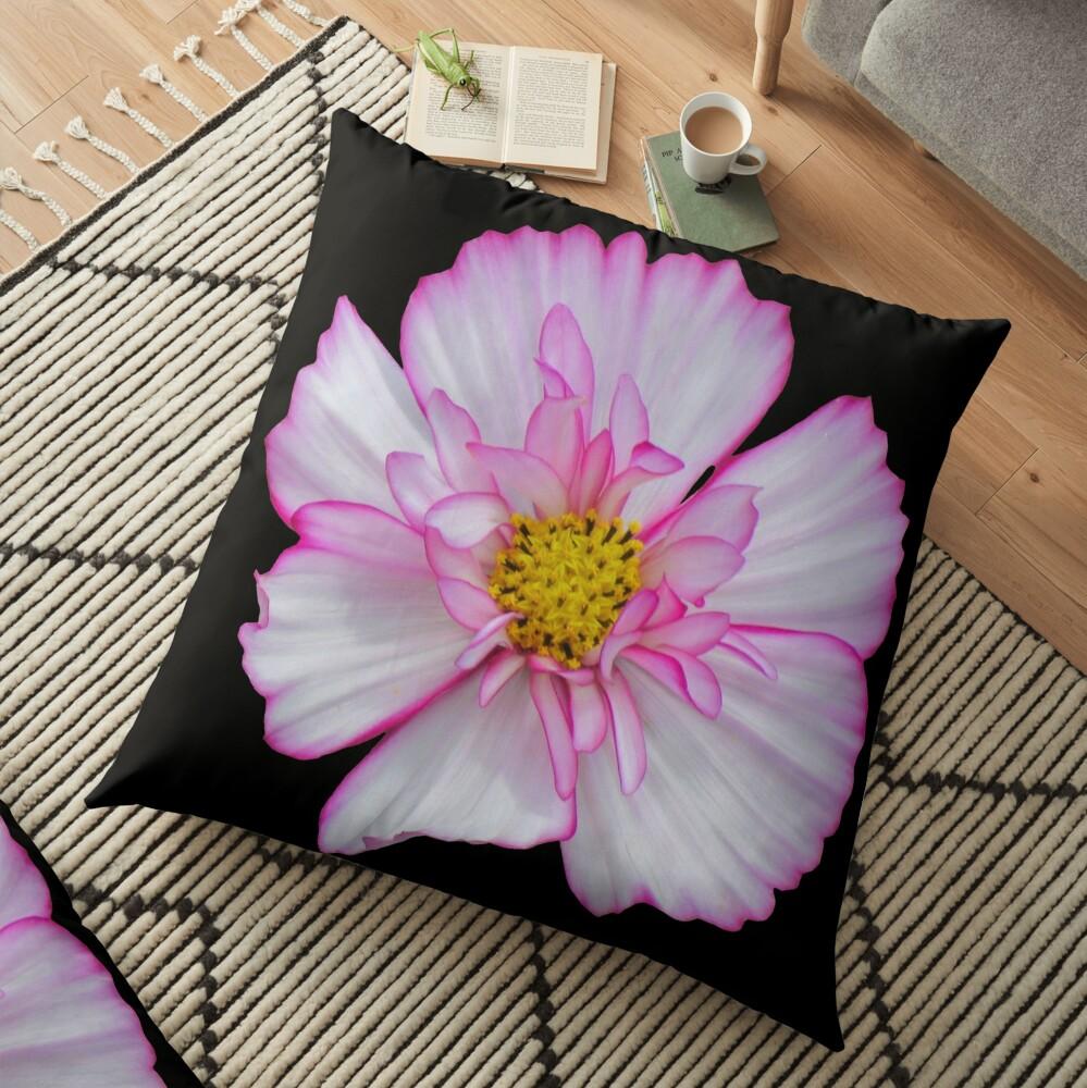 Blume in pink & weiß, Blumen, Blüte, Garten, Natur Bodenkissen