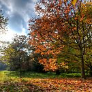The Magic Of Autumn by Kevin Cotterell