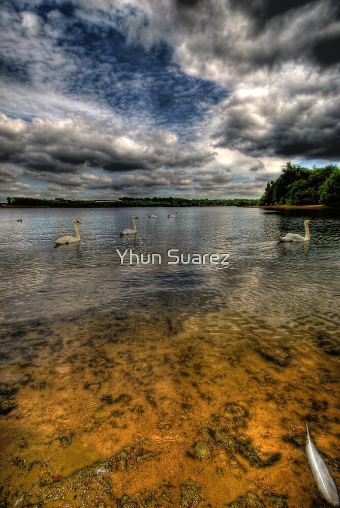 Birds Of The Same... by Yhun Suarez