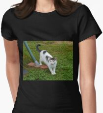 I Guess I Have A New Cat?! Women's Fitted T-Shirt