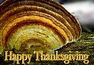 False Turkey Tail - Thanksgiving Blank Greeting Card by Marcia Rubin