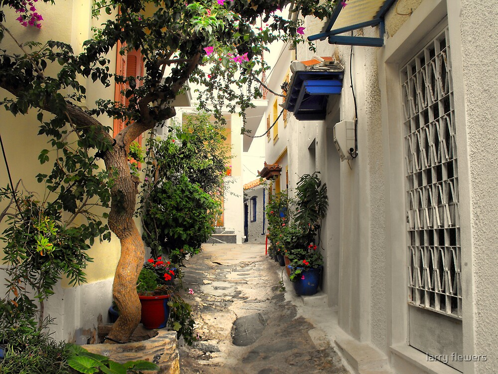 Little Greek Street  by larry flewers