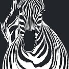 Zebra Cutout by Anna Phillips