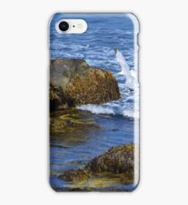 The Rocky Coast Line at Point Judith, RI [3] iPhone Case/Skin