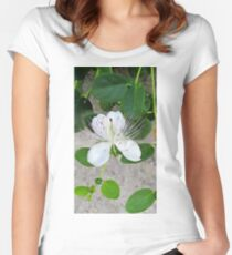 White flower of capers growing on a wall Women's Fitted Scoop T-Shirt