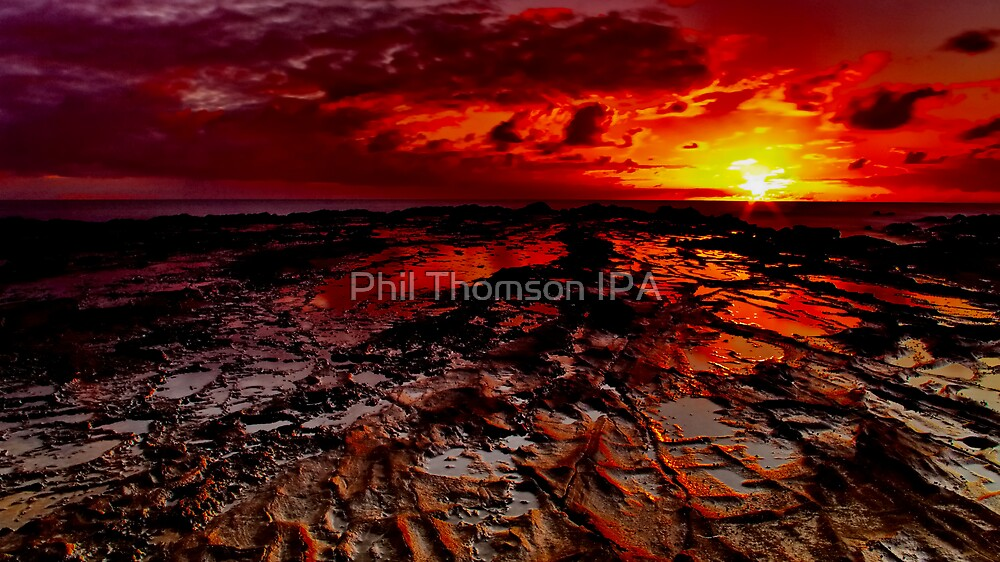 """Alpha"" by Phil Thomson IPA"