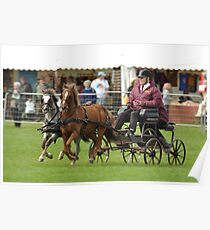 Horse & Cart Poster