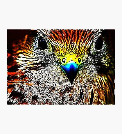 Fractual Eagle Photographic Print