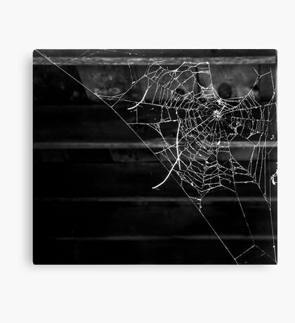 Secrets in the Dark Canvas Print