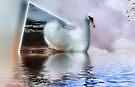 Sailing Through Dimensions by Elaine Manley