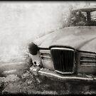 Wreck by Nikki Smith