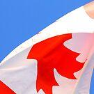 Canada by Oceanna Solloway