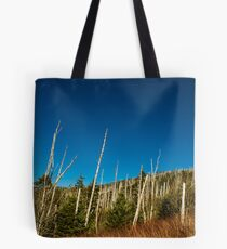 View from Clingmans Dome! Tote Bag