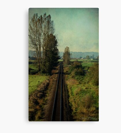 Matsqui in the Fall Canvas Print