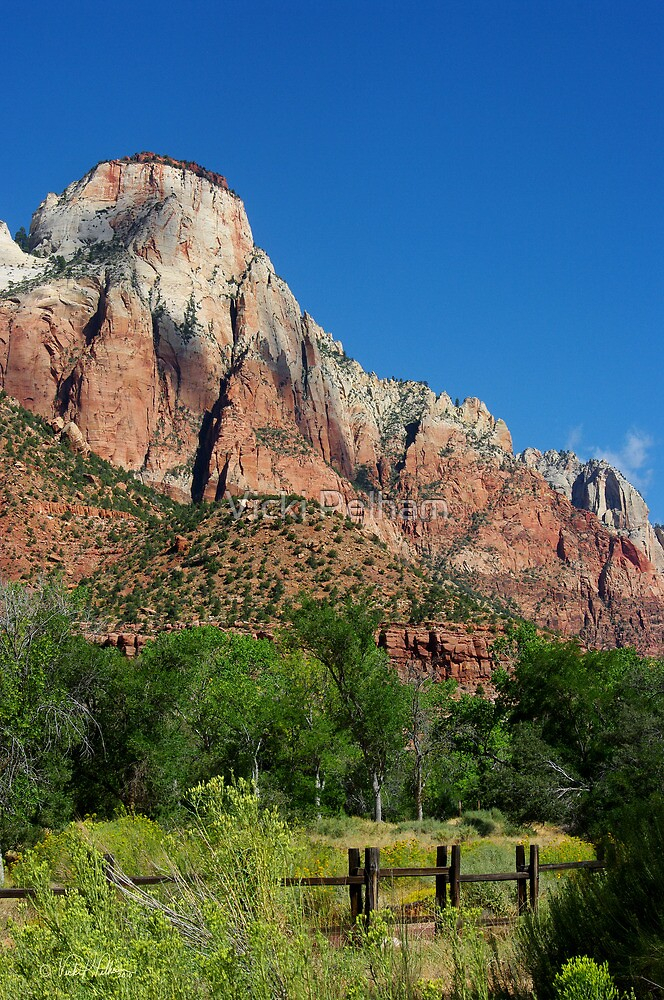 Stroll in the Park ~ Zion by Vicki Pelham