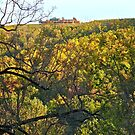 Carter Mountain Orchard - Autumn in Virginia by Jack McCabe
