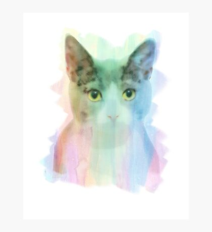 Watercolor Cat Photographic Print