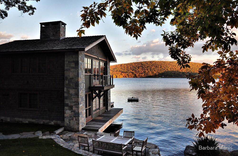 Lake Front by Barbara Manis
