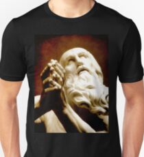 The Hermit's Prayer T-Shirt