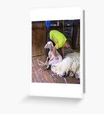 Shearer Greeting Card