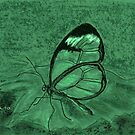 Clear Green by Dawn B Davies-McIninch