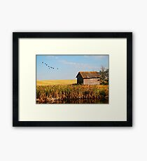 fall on the prairies Framed Print